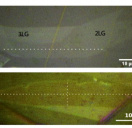 Embedded trilayer graphene flakes under tensile and compressive loading